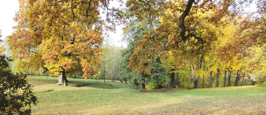 Helfenberger Park
