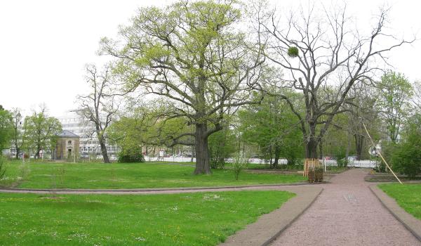 Blüherpark Dresden